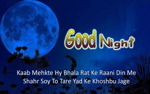 Good Night Wishes Images Photo Pics Download With Quotes