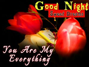 Good Night Images For Husband With Flower Download