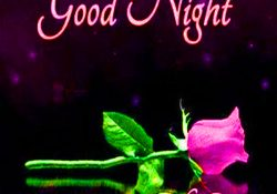 Good night greeting images 4010 good night images pictures free 183 good night wishes greetings images photo pics download m4hsunfo