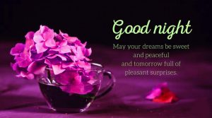 Latest Good Night Images Wallpaper Pictures HD Download