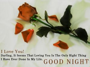 Good Night Images Pictures With red Rose