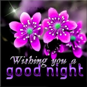 3D Good Night Images With Flower Download