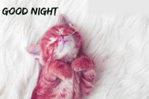 gd night images Photo Pictures Free Download
