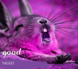 gd night images Photo HD Download