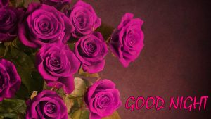 Flowers Good Night Images Wallpaper Pictures With Rose