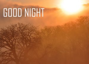 Friends Good Night Wallpaper For Whatsaap Download