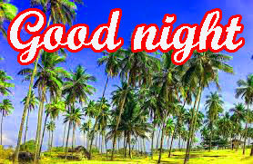 Free Good Night Photos Pics HD Download