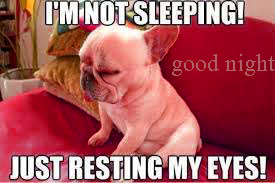 Funny Good Night Images Pics HD Download