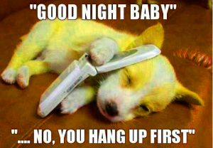 Funny Good Night Images Photo Pictures Free Downloadfor Whatsapp