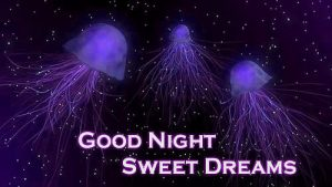 3D Good Night Images Pictures Free For Whatsaap
