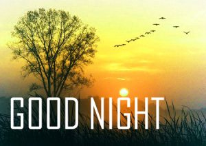 Friends Good Night Images Download