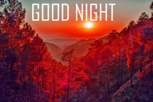 Good Night hd Images Pictures Free Download