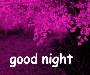 711 Good Night Images Photo For Whatsapp