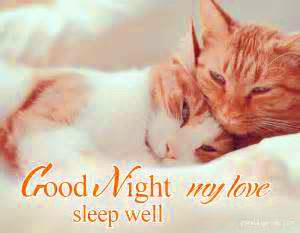 Love Good Night Images Photo Pictures For Husband Free Download