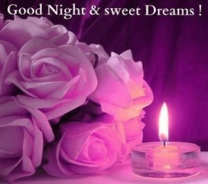 Good Night Wishes Greetings Images Wallpaper Pics Rose