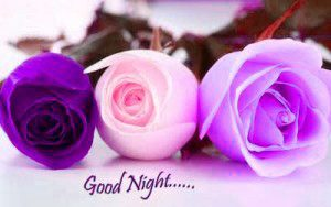 Good Night Wishes Greetings Images Photo Wallpaper Download
