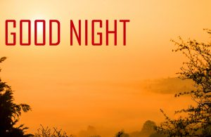 Free Beautiful Good Night Images Pictures Download