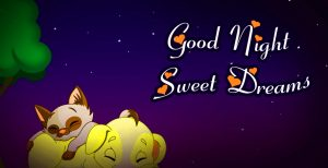 Good Night Wishes Greetings Photo Pictures Download