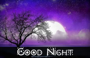 Gud nyt Pics Photo Pictures Free Download