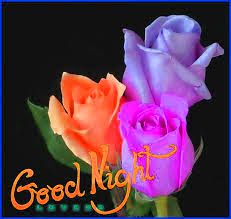 Latest Good Night Images Photo With Flower