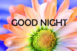 new good night images Photo Pictures HD Download