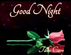 Romantic Good Night Images Photo Download With Flower