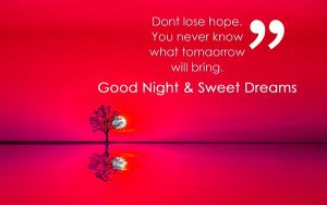 Good Night Images pictures Free Download With Quotes