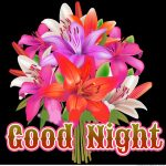 343+ Good Night Images Photo With Flowers