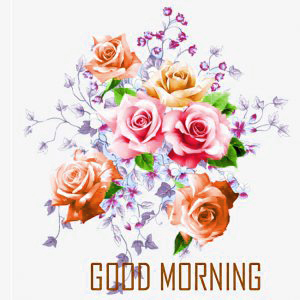 Good Morning Images Photo Pictures Download In HD