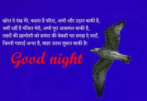 Hindi Good Night Images Wallpaper Photo Pics Download