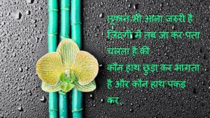 Hindi Shayari Images Photo Wallpaper Download