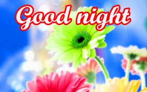 Her Good Night Images With Flower