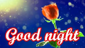 Her Good Night Images Wallpaper Pics With Red Rose