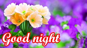 Flower Good Night Images Photo HD Download