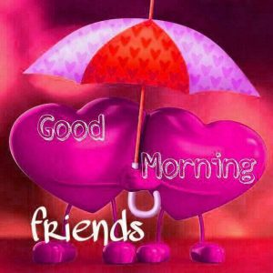 Friend good morning Images Photo Pictures Download In HD