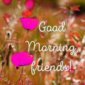 Best friends Good Morning Photo Wallpaper Pics Download