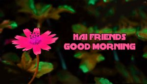 Best friends Good Morning Wallpaper Pics Download
