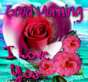 Good Morning I love you Images Photo Pics Download