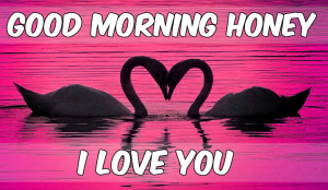Good Morning I love you Images Wallpaper Download