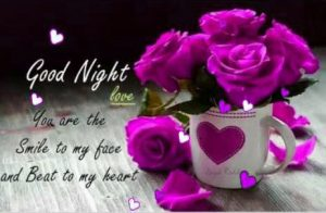 Love Good Night Images Photo Pictures Download With Flower