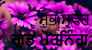 Punjabi Good Morning Images Photo Pictures Wallpaper Pics Free Download