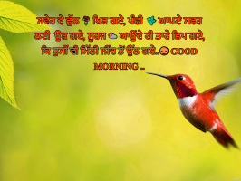 Punjabi Good Morning Images Wallpaper Photo Pics Pictures HD Download