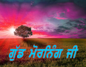 Punjabi Good Morning Images Wallpaper Photo Pics Download