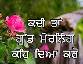Punjabi Good Morning Images Photo Download