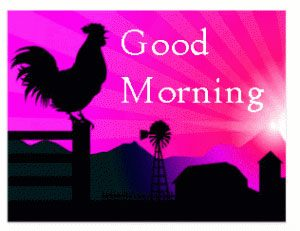 Post Card Good Morning Images Photo Pics HD Download