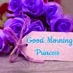 78+ Good Morning Images For Princess