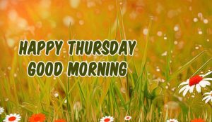 Thursday Good Morning Images Wallpaper Pictures HD Download