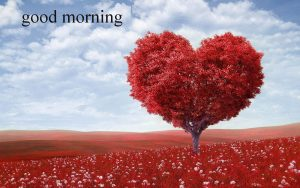 Wife Good Morning Images Photo Wallpaper HD Download