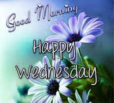 Wednesday Good Morning Images Wallpaper HD Download