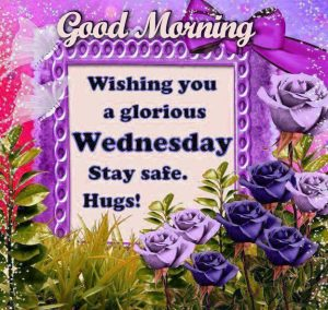Wednesday Good Morning Images Wallpaper Photo Download